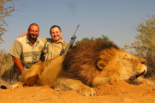 König der Löwen 5